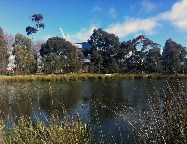 Parkville wetlands under threat