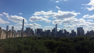 Central Park from the Metropolitan Museum of Art