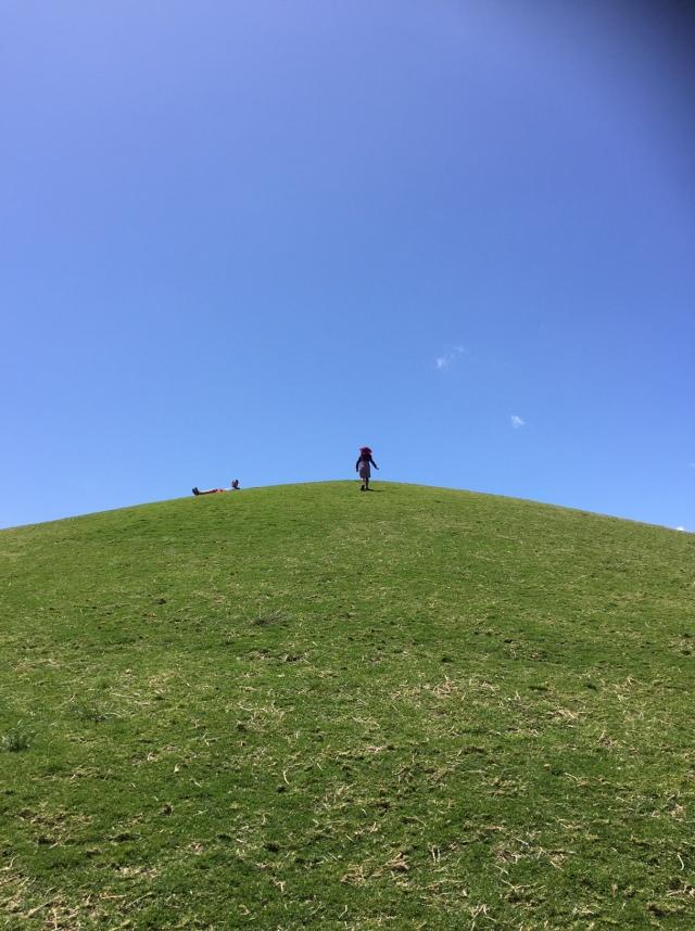 Return to Royal Park hill